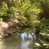 ... Photo Taken At UCLA Mildred E. Mathias Botanical Garden By Kit B. On 4  ...