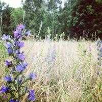6/24/2012 tarihinde Rebeccaziyaretçi tarafından Volkspark Schönholzer Heide'de çekilen fotoğraf
