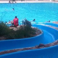 Piscinas p m jose caballero pool in alcobendas for Piscina alcobendas