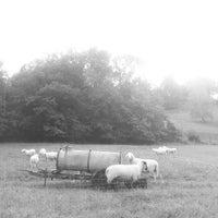 Photo taken at Johannesberg by Margit H. on 9/6/2012