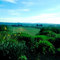 Photo taken at Gloria Ferrer Caves & Vineyards by noah a. on 2/26/2012
