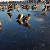 Photo taken at Trout Lake by Scott M. on 1/15/2012