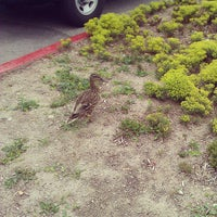 Photo taken at SLCC Jay L. Nelson Administration Building. by Topher H. on 4/26/2012