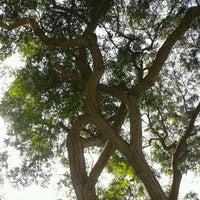 Photo taken at Parque Gonzales Prada by Eduardo T. on 6/24/2012