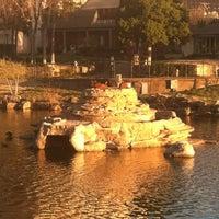 Photo taken at Swan Lake by Aaron C. on 3/5/2012