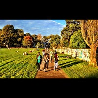 Photo taken at Camperdown Memorial Rest Park by 高手놀리밑™ on 4/28/2012