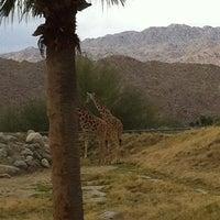 Photo taken at The Living Desert Zoo & Botanical Gardens by Susan K. on 3/22/2012
