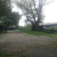 Photo taken at Carska bara by Александар Б. on 7/9/2014