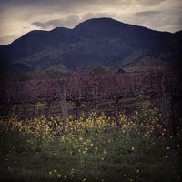 Photo taken at Calistoga AVA by Lewis C. on 3/10/2014