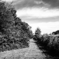 Photo taken at District 4, Kent Island by Dan H. on 8/16/2014