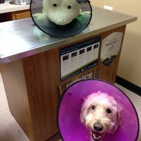 Photo taken at Heritage Animal Hospital by Nancy on 4/22/2014