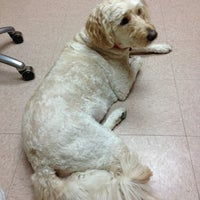 Photo taken at Heritage Animal Hospital by Nancy on 3/8/2013