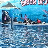 Photo taken at Oasis Sea World by Montol T. on 3/10/2013