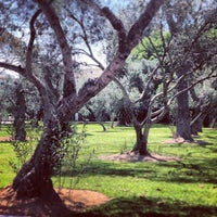 Foto tomada en Bosque El Olivar por Marcelo S. el 12/14/2012