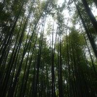 Photo taken at 竹の庭 by ayako on 5/1/2013