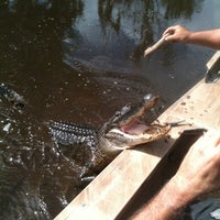 Photo taken at Airboat Tours by Arthur by Jill R. on 10/12/2013