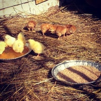 Photo taken at Clarks Poultry Paradise by Arissa C. on 7/24/2013