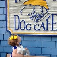 Photo taken at Salty Dog Cafe-Waterside Deck by Pamela C. on 4/10/2013
