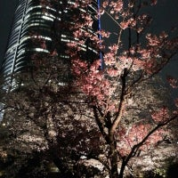 Photo taken at Mohri Garden by atsushi69 b. on 3/23/2013