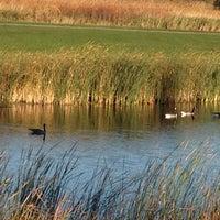 Photo taken at Lady Bug Lake by Brian P. on 10/12/2013