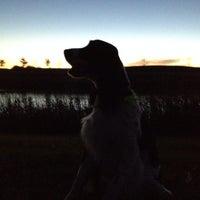 Photo taken at Lady Bug Lake by Brian P. on 10/26/2013