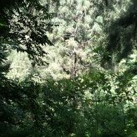 Foto tomada en Bosque Los Colomos II por Enrique L. el 8/26/2012