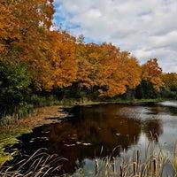 Photo taken at Wolfe Lake by Jean W. on 10/15/2018