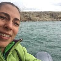 Photo taken at Isla Magdalena by Patrícia T. on 1/14/2017