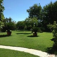 Foto scattata a Trattoria Da Lovise da Eugenio V. il 8/28/2013