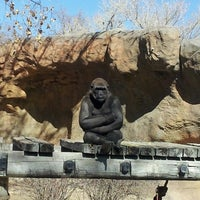 Photo taken at ABQ BioPark Zoo by Nathan N. on 3/13/2013