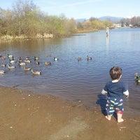 Photo taken at Trout Lake by Dawn B. on 4/2/2013