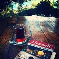 10/14/2017にArzu D.がYörük Parkıで撮った写真
