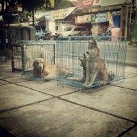 Photo taken at Nurani Clinic & Pet Shop by Reza N. on 11/30/2013