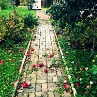 Photo taken at Romanos Luxury Villa Spa & Resort by Roman P. on 10/6/2013