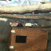 Photo taken at Zoo Brew by Drew V. on 8/14/2013