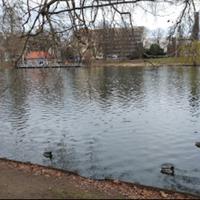 Foto tomada en Lietzenseepark por Frau Coco L. el 4/3/2017