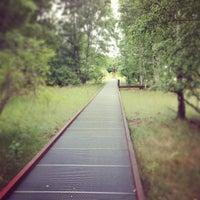 6/30/2013 tarihinde Master C.ziyaretçi tarafından Natur-Park Schöneberger Südgelände'de çekilen fotoğraf