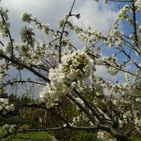 Photo taken at Kehrrundes Garten by Jeannette M. on 5/1/2015