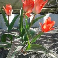 Photo taken at Kehrrundes Garten by Jeannette M. on 4/20/2015