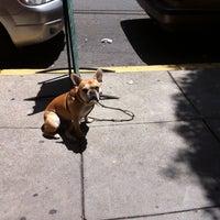 5/9/2013にDanielle M.がMexico au Parcで撮った写真