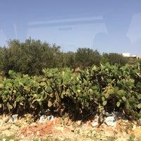 Photo taken at Soussa beach by Lulu Katty on 6/23/2014