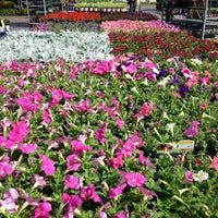 Photo taken at The Home Depot by Elina R. on 4/15/2013