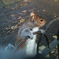 Photo prise au St James's Park par Alessandro C. le12/11/2012
