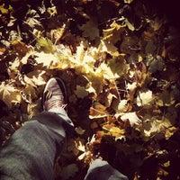 Das Foto wurde bei Auerpark von Bjoern K. am 10/28/2012 aufgenommen