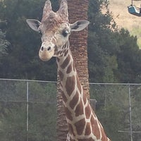 Photo taken at Oakland Zoo by Mark W. on 5/26/2013