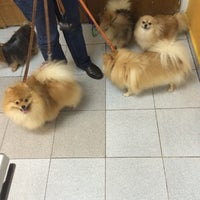Photo taken at Clinica Veterinaria Dr. Loera by Moncho A. on 7/17/2014
