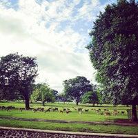 Photo taken at Bogor Botanical Gardens by Erick A. on 4/25/2013