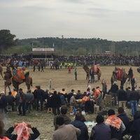 Photo taken at Ortaklar Deve Güreşi by Hakan K. on 3/19/2017