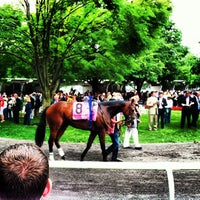 Photo taken at Belmont Park Racetrack by Bryan B. on 6/8/2013