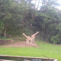 Photo taken at Taman Safari Indonesia II by AudRey F. on 12/28/2013